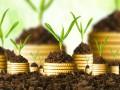 Пять вариантов поиска денег на свое дело, если не дают кредит