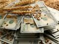 Зерновое пике: Чем Украине грозит обвал цен на пшеницу