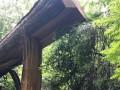 Житель Львовщины расчищал завалы от стихии и погиб в лесу