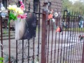 В Одессе на Куликовом поле уничтожили памятные таблички и цветы