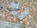 В столичном парке вандалы разбили мусорные урны