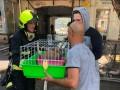 В Одессе спасатели ликвидировали пожар