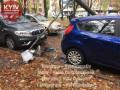 В Киеве под тяжестью деревьев на дорогу упал столб