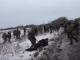Дубинками по лежачим: видео драки между полицейскими и участниками блокады Донбасса
