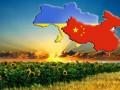 Китай поможет Украине строить заводы для экспорта продукции в ЕС