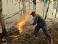 Пострадавшие от лесных пожаров жители Читы записали видеообращение к Путину