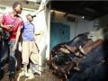Нападение исламистов на побережье Кении унесло десять жизней