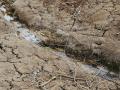 Осадки не наполнят водоемы Крыма в следующем году, - Ученый
