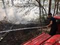 В Херсонской области горит 5 гектаров леса