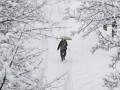 Жертвами морозов в Европе стали более 160 человек