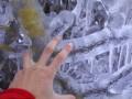 Замороженная страна: Словению покрыло слоем льда