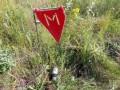 Минобороны: в зоне ООС на минах подорвались ДРГ и саперы боевиков