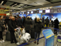 Руководство МАУ украло более 10 млн грн у аэропорта Борисполь