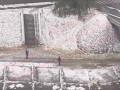 В Киеве сняли, как коммунальщики косили траву под снегом