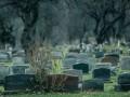 На Николаевщине на сельском кладбище осквернили сотню могил