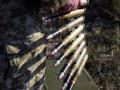 Разведение сил: Добровольцы заявили, что остаются в Золотом