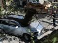 Во Львове дерево разбило автомобиль депутата