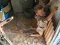 В Луганской области родители держали на цепи 6-летнего сына