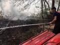 Лесной пожар начался на Херсонщине