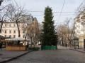 В Одессе для елки на Дерибасовской срубили 400 сосен
