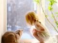 Спасение младенца кошкой попало на видео