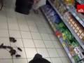 Во Львове в супермаркете выпустили мышей в протест против российских товаров