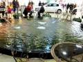 В Днепропетровске пьяные мужчины искупались в фонтане торгового центра