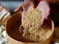 Прикарпатские чиновники украли зерна и муки на 15 млн грн