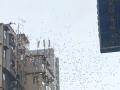 Денежный дождь: 24-летний биткоин-миллионер сбросил с крыши 100 млн долларов