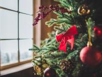 Сколько будет стоить елка на Новый год 2019