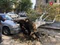 В Тбилиси ураган сорвал крыши с десятков домов