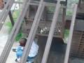 В Запорожье пьяная девушка хотела покончить с жизнью