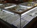 Проглотившего на ювелирной выставке поддельный бриллиант китайца обязали выплатить штраф