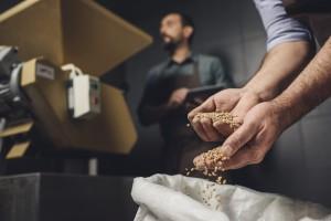 В Аграрном фонде пропало зерно почти на 20 млн гривен