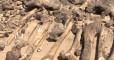 Под Кропивницким нашли братскую могилу немцев