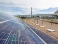 В Чернобыльской зоне открыли первую солнечную электростанцию