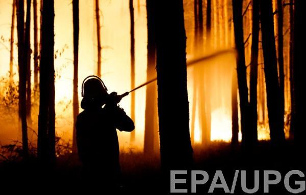 В Германии тушат лесной пожар