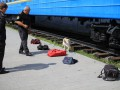 ЕС даст белорусским таможенникам 130 тысяч евро на собак