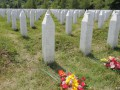 Нидерланды признаны виновными в гибели 300 мусульман в Сребренице