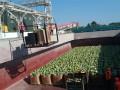 Первая в этом году баржа с арбузами прибыла в Киев