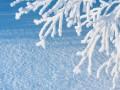 Синоптики спрогнозировали погоду на Рождество