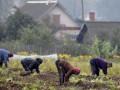 Бизнесмены Беларуси начали сбор подписей за выход из Таможенного союза
