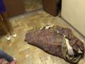 В Киеве неисправный лифт задушил собаку