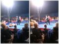 В Белой Церкви цирковой медведь напал на зрителей