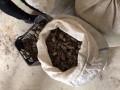 В подпольных цехах Луцка нашли 200 кг янтаря