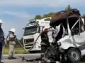 На Львовщине из-за аиста в аварии пострадали люди