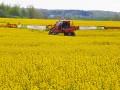 Аграрии в Украине назвали свое черное золото