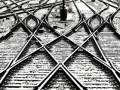 В Луганской области локомотив переехал мужчину, лежавшего на рельсах