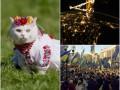 Хорошие новости 21 сентября: повышение соцстандартов и украинский фильм в Торонто