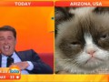 Сердитый котик дал эксклюзивное интервью телеканалу Австралии